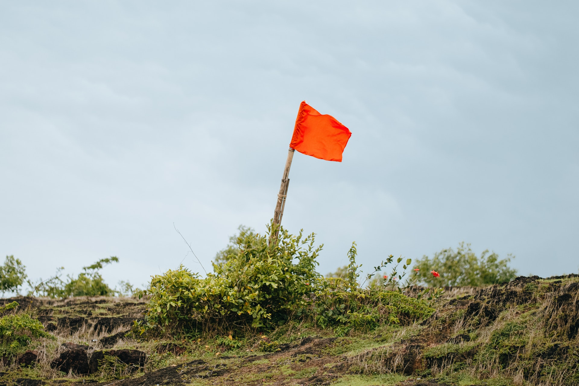 5 Red Flags Every Company Should Look For During The Recruitment Process